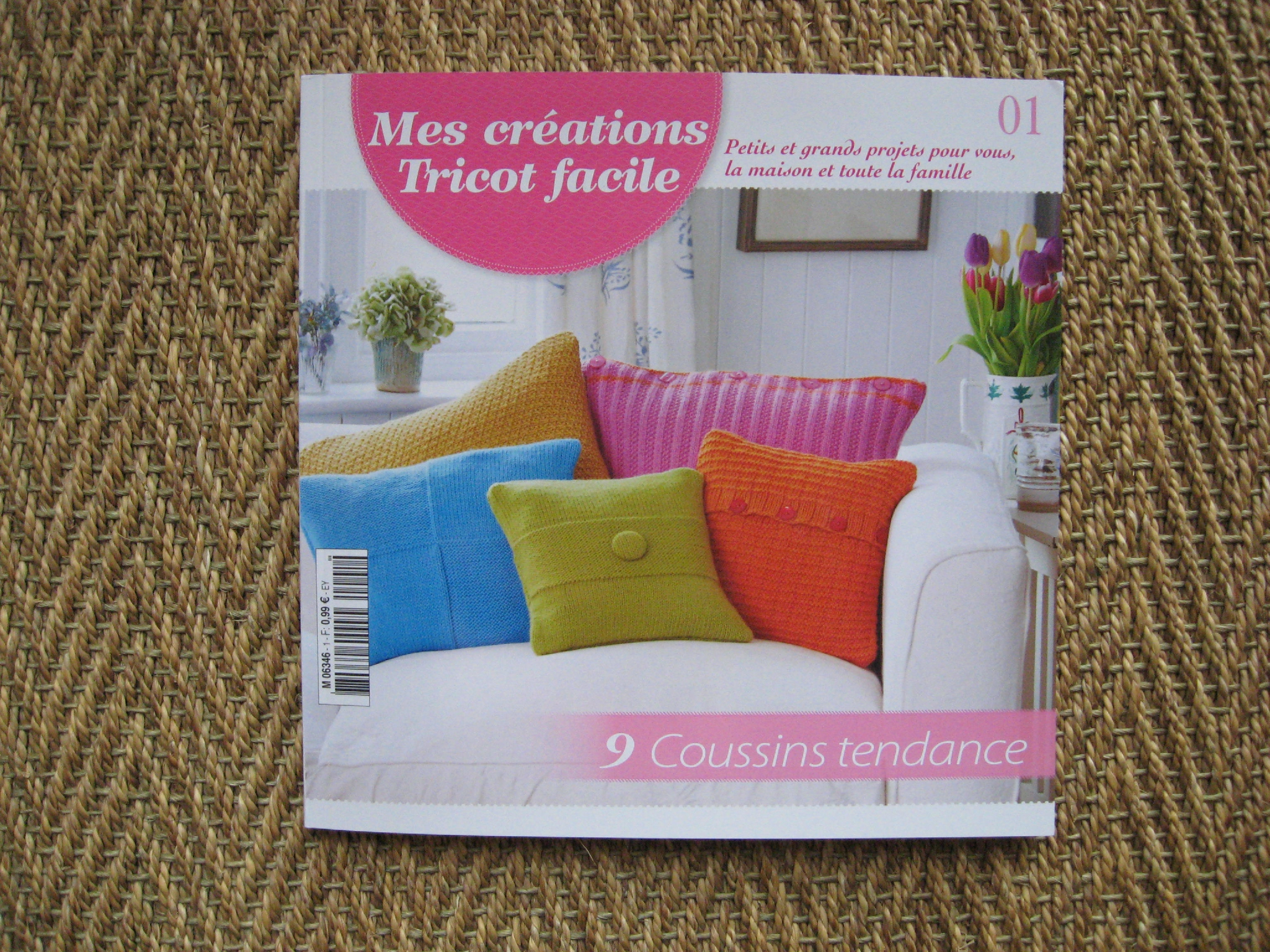 Tricot facile collection hachette